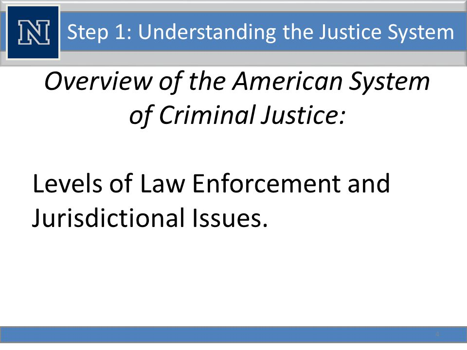 Step 1: Understanding the Justice System Overview of the American System of Criminal Justice: Types of Law: Legislated Law Administrative Law Case Law 5