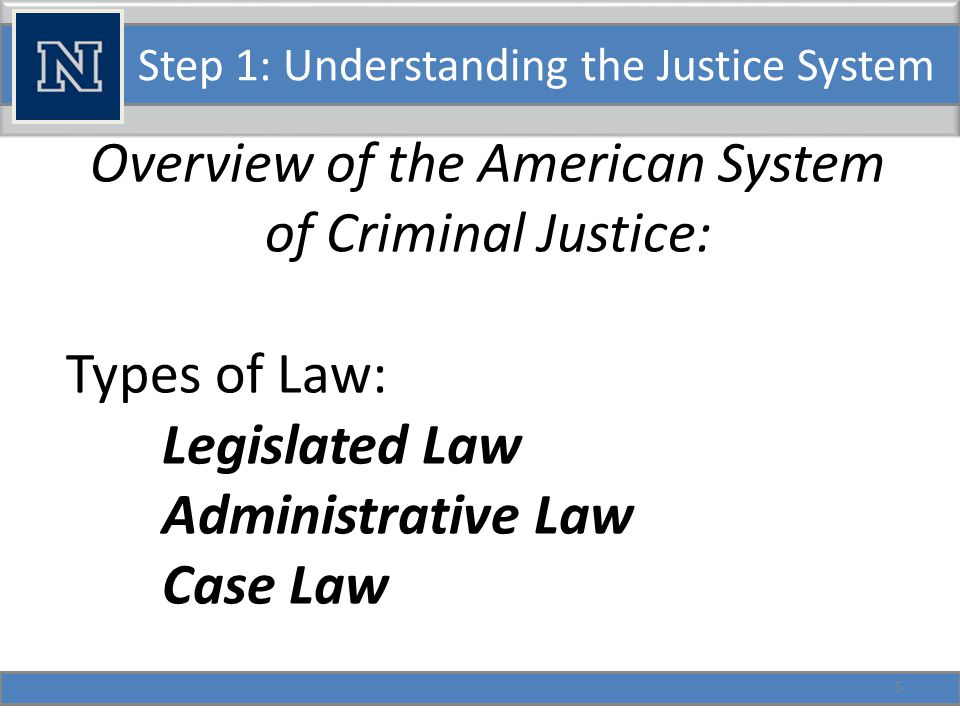 Step 1: Understanding the Justice System Federal laws: Task Forces and Federal law enforcement.
