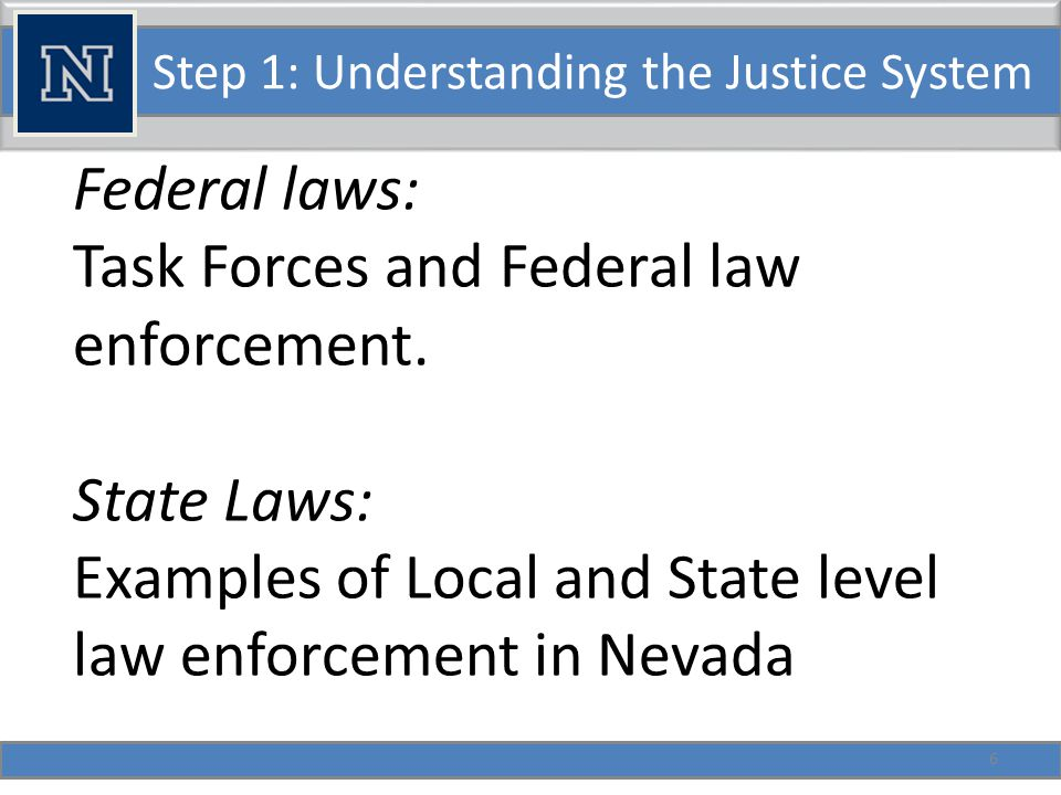 Step 1: Understanding the Justice System Overview of the American System of Criminal Justice: Levels of Courts and Relative Legal Powers.