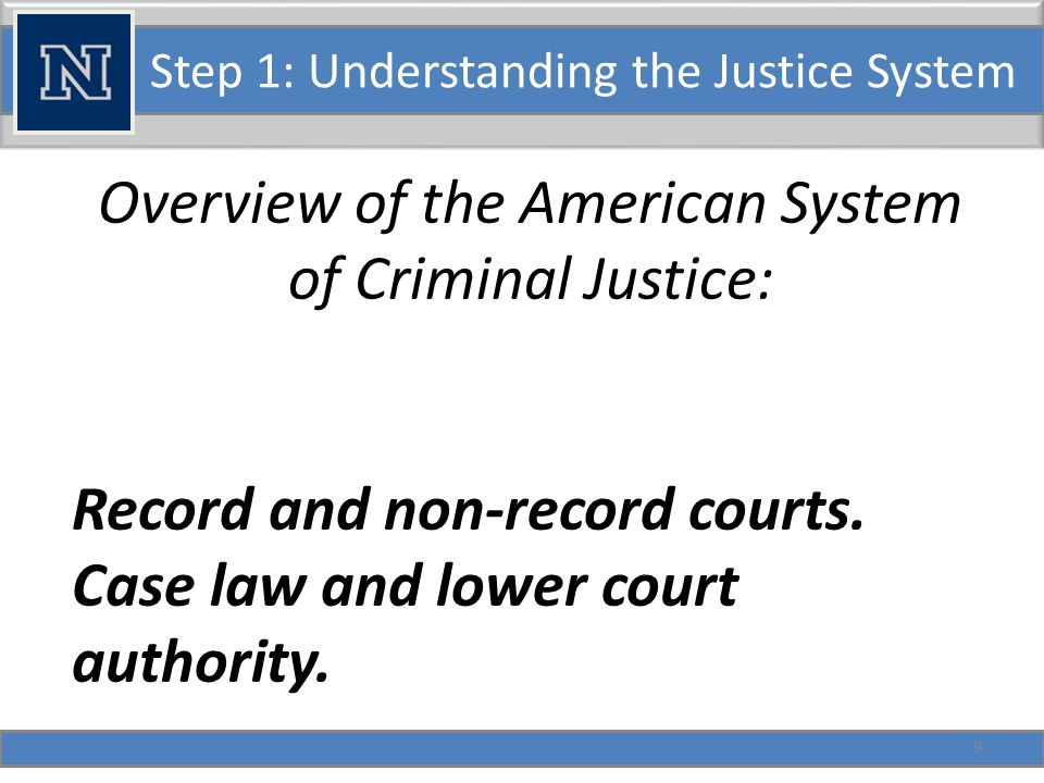 Step 1: Understanding the Justice System Overview of the American System of Criminal Justice: Levels of Corrections.