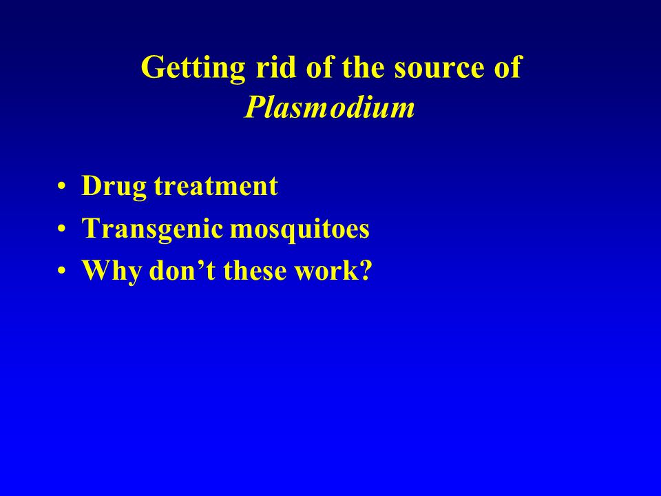 Getting rid of the source of Plasmodium Drug treatment Transgenic mosquitoes Why don't these work.