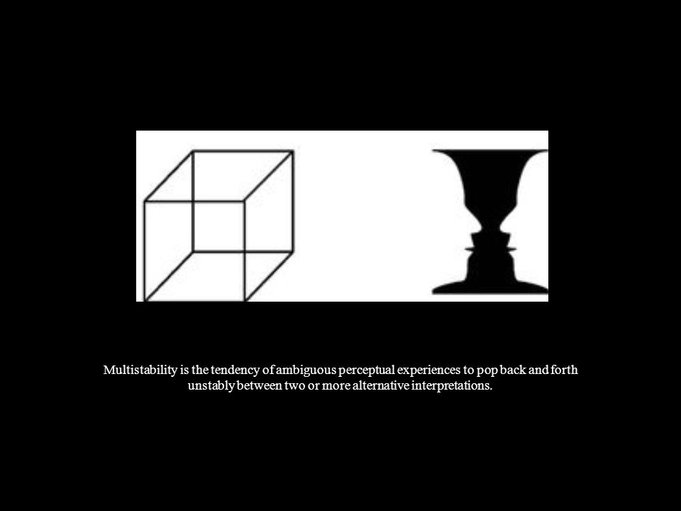 Invariance is the property of perception whereby simple geometrical objects are recognized independent of rotation, translation, and scale ; as well as several other variations such as elastic deformations, different lighting, and different component features.
