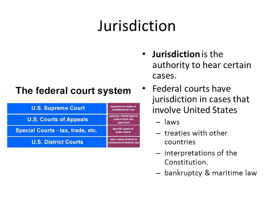 Jurisdiction Federal courts also have jurisdiction over cases involving certain persons: – Ambassadors/representatives of foreign governments – 2 or more state governments – The US government or office/agency – Citizens who are residents of different states – Citizens who are residents of the same state but claim lands under grants from different states.
