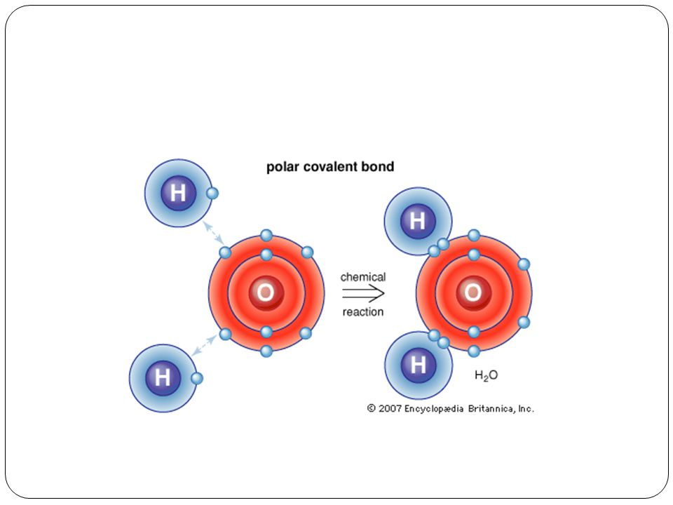 Water Covalent Bond with polar bonds