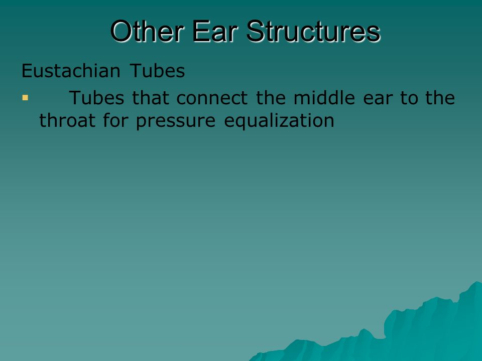  Bacterial infections of the middle ear can sometimes result in some hearing loss.
