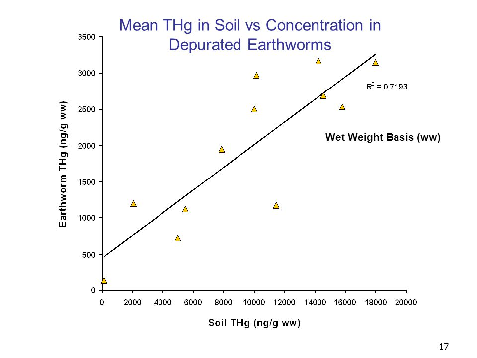 18 Wet Weight Basis (ww) Mean MeHg in Soil vs Concentration in Depurated Earthworms R 2 =.4201