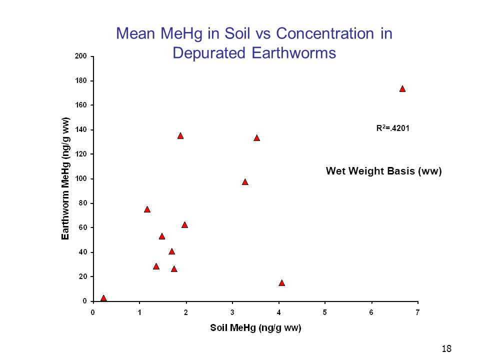 19 Downstream River Kilometer (0 = Waynesboro Point Source) RVP ARB NPK BPK HPK DMS RTR CRM FOR BVD GGC CNF Wet Weight Basis (ww) BAF = [earthworm] / [soil] Bioaccumulation Factor (BAF) for Total Mercury (THg) Using Depurated Earthworm Data