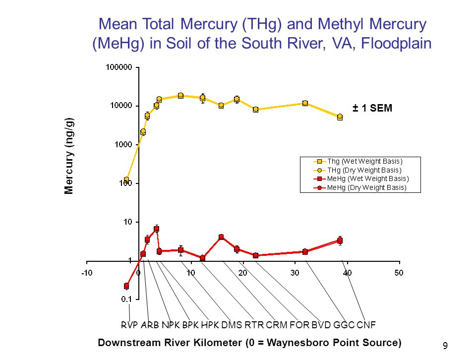 10 RVP ARB NPK BPK HPK DMS RTR CRM FOR BVD GGC CNF Downstream River Kilometer (0 = Waynesboro Point Source) Mean Mercury (THg & MeHg) in Depurated Earthworms Living on the South River, VA, Floodplain ± 1 SEM