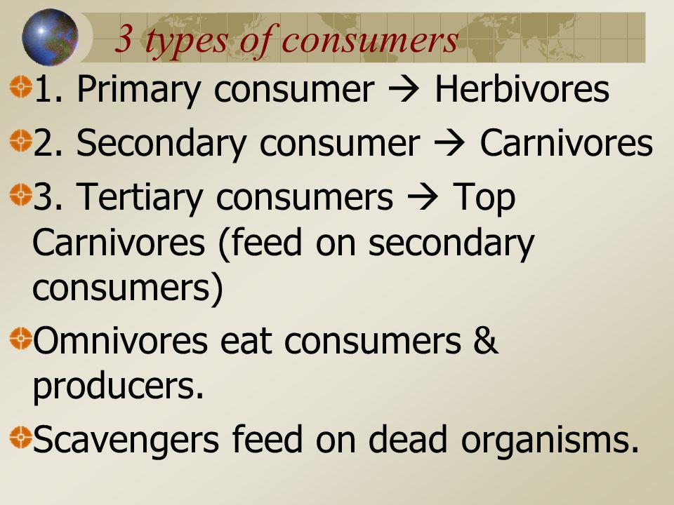 3 types of consumers 1.Primary consumer  Herbivores 2.