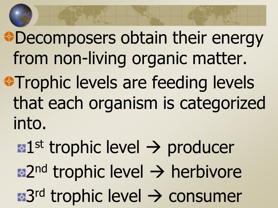 Decomposers obtain their energy from non-living organic matter.