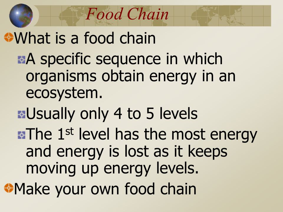 Food Chain What is a food chain A specific sequence in which organisms obtain energy in an ecosystem.