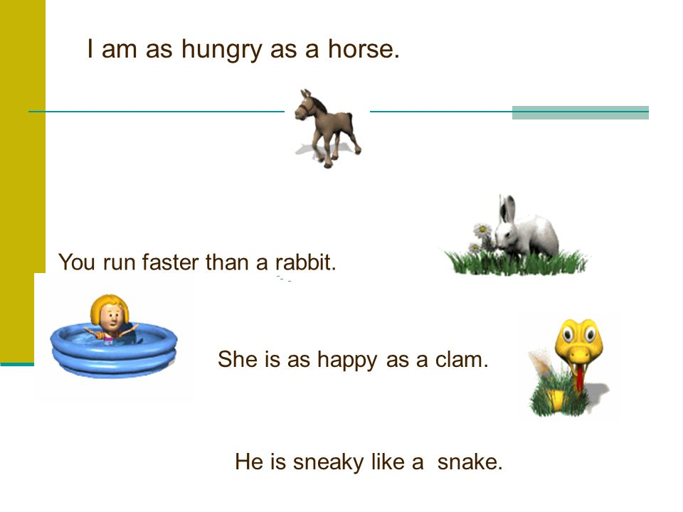 I am as hungry as a horse.You run faster than a rabbit.