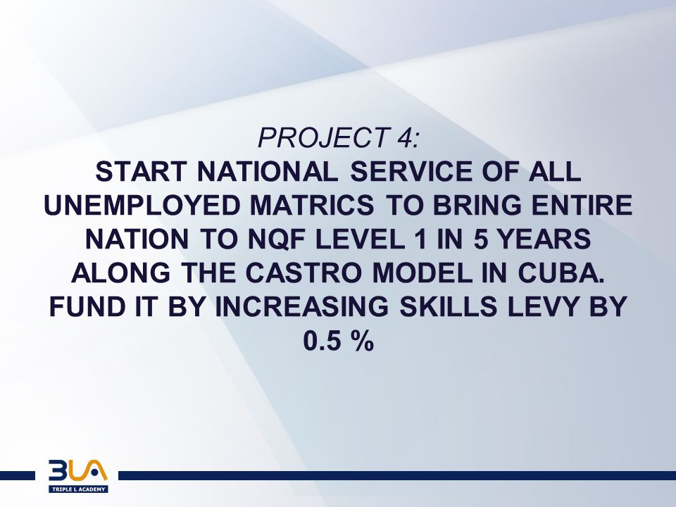 PROJECT 5: Initiate a project that looks at how a skills pathway can be created for entrepreneurs in the 2nd economy.