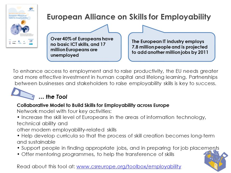 European Alliance on Skills for Employability New Skills for New Jobs in Europe Under the umbrella of: