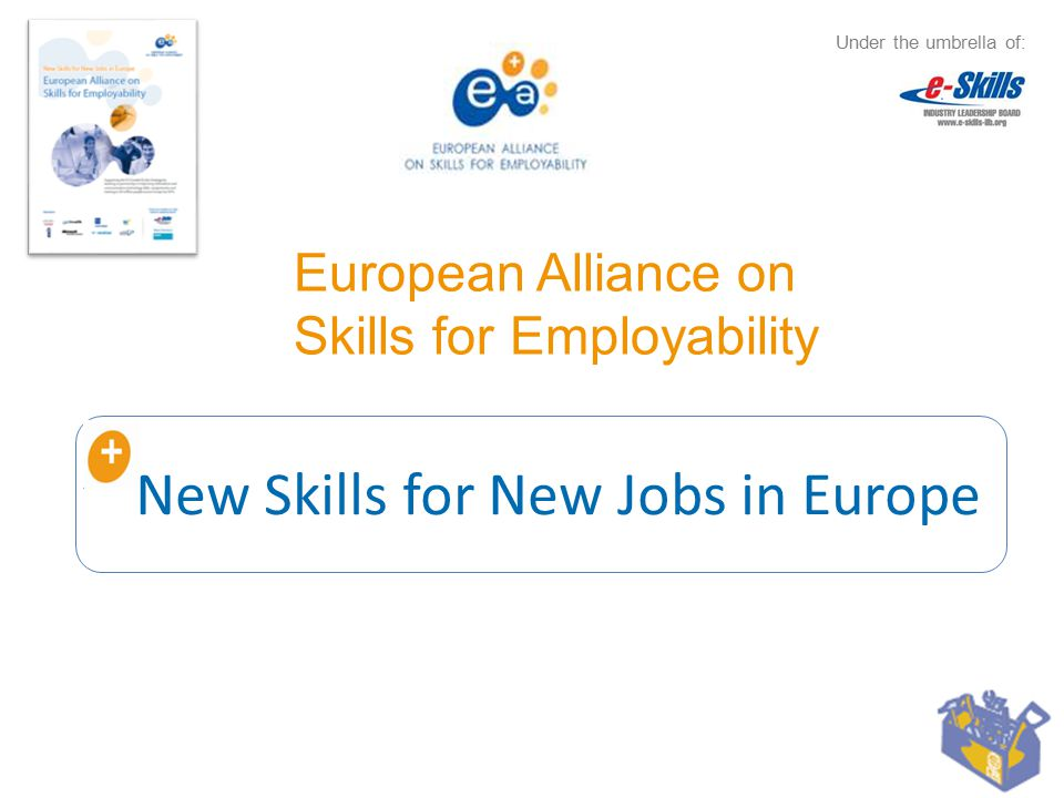 Agenda 1.The need for e-skills and employability in Europe 2.