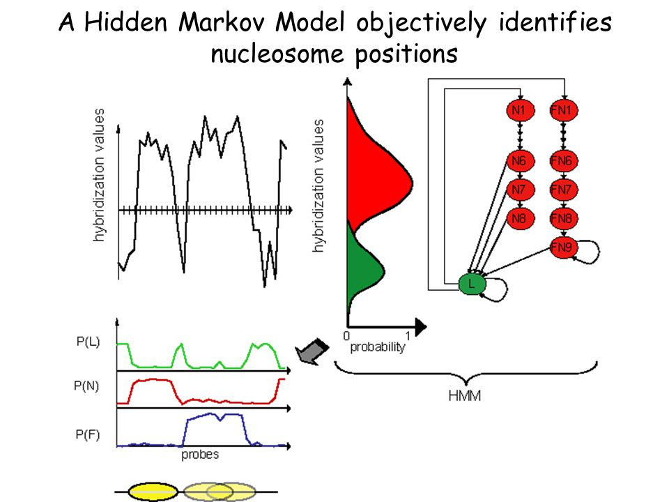 Hidden Markov Models for Identifying Bound Fragments HMM's are trained on known data to recognize different states (eg.