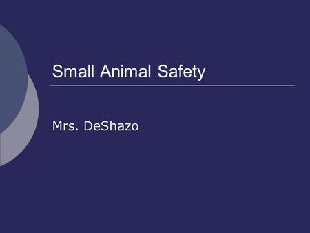 Small Animal Safety Mrs. DeShazo. Risks with Small Animals  Zoonoses- diseases that can be transmitted from animals to humans.