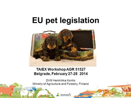 EU pet legislation TAIEX Workshop AGR Belgrade, February DVM Hentriikka Kontio Ministry of Agriculture and Forestry, Finland.