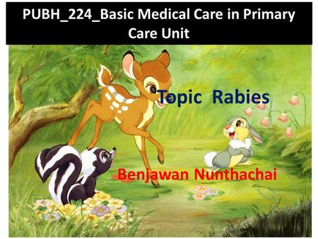 PUBH_224_Basic Medical Care in Primary Care Unit Topic Rabies Benjawan Nunthachai.