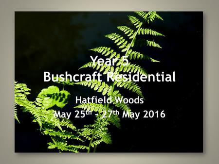 Year 5 Bushcraft Residential Hatfield Woods May 25 th – 27 th May 2016.
