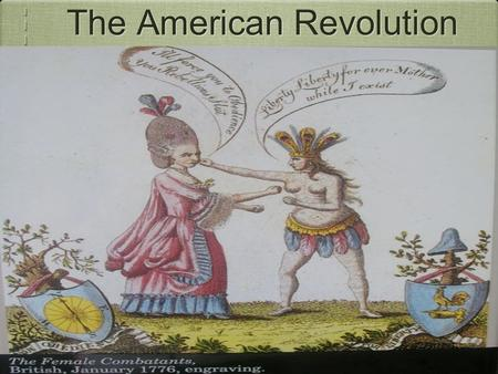 The American Revolution. Presentation Overview Colonial Advantages British Advantages Colonial & British Disadvantages Decisive Colonial victories Results.