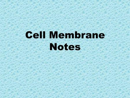 Cell Membrane Notes. Cell Membrane - Plasma Membrane – Phospholipid Bilayer.