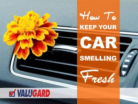 SMELLING KEEP YOUR CAR. Everyone loves that new car smell, but after a while our vehicles usually start collecting various foul odors. Bad car smells.