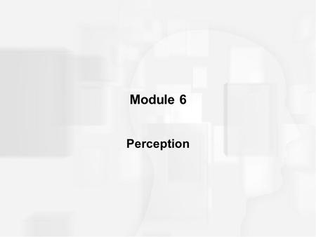 Module 6 Perception. PERCEPTUAL THRESHOLDS Threshold –a point above which a stimulus is perceived and below which it is not perceived –threshold determines.