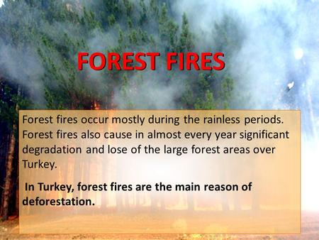 FOREST FIRES FOREST FIRES Forest fires occur mostly during the rainless periods. Forest fires also cause in almost every year significant degradation and.