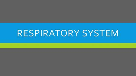 RESPIRATORY SYSTEM. OBJECTIVES 1.Identify terms pertaining to the respiratory system 2.List the parts of the respiratory system and give their location.