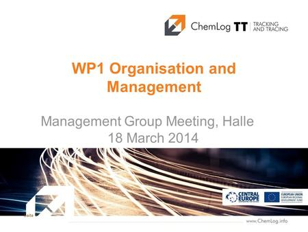 Seite 1 WP1 Organisation and Management Management Group Meeting, Halle 18 March 2014.