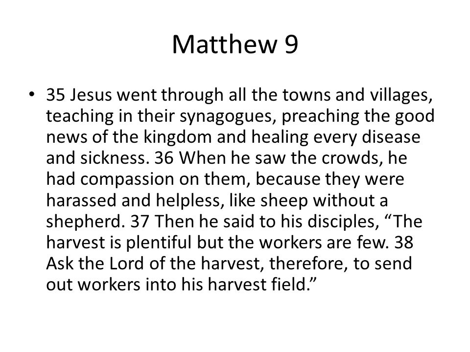 What did Jesus see the lives from the crowd.