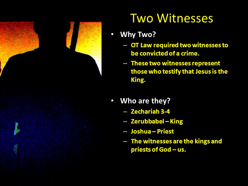 Two Witnesses Where are they killed.