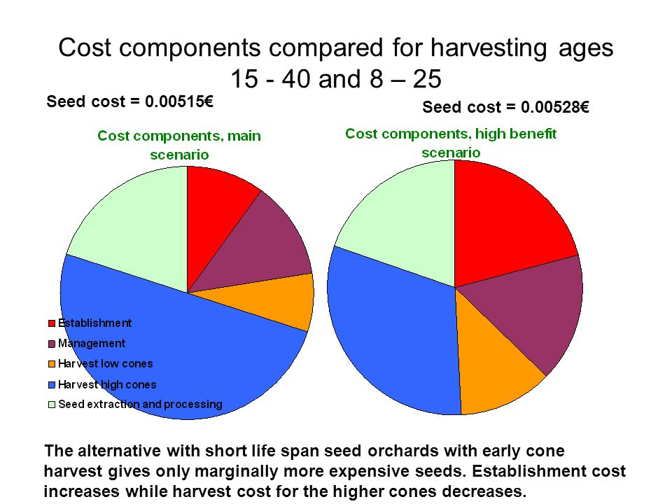 Main conclusions 600 grafts/ha is not clearly preferable to 400.