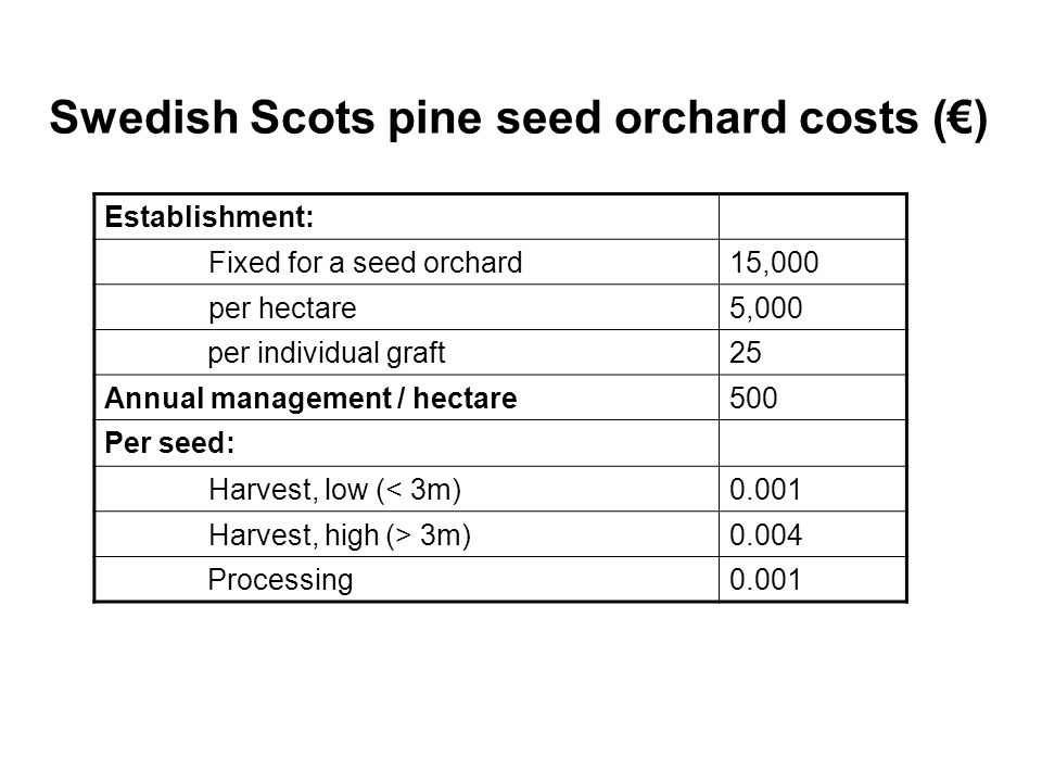 Seed production per hectare is higher with higher graft density, in particular for the early crops!