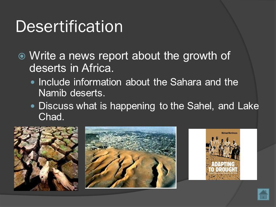 North African Revolutions  Create a news report about the current revolutions taking place in north Africa today.