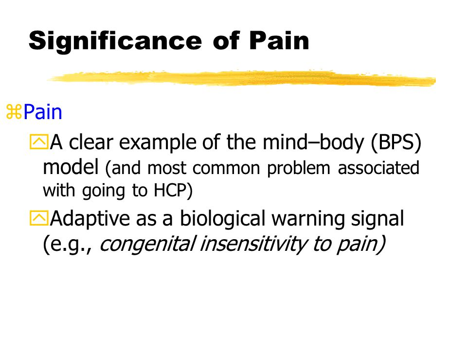 The Physiology of Pain z How you know that you stubbed your toe handout y1.