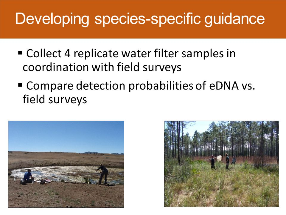  Collect environmental covariates UV exposure Conductivity Water temperature pH Area Volume  Use occupancy modeling to determine effects of covariates on detection probabilities Developing species-specific guidance