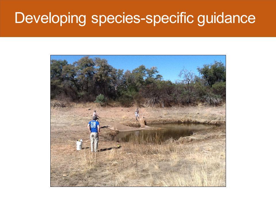 Arizona treefrog detection (1.0)  15 sites sampled  Detected at 4 sites  1.0 detection probability