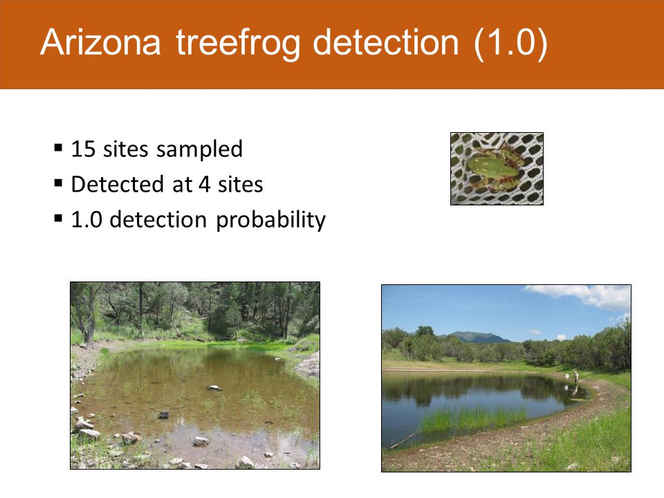 Chiricahua leopard frog detection (0.65) 20 sites sampled 1 site detected by field crews missed by eDNA 2 sites detected by eDNA missed by field crews