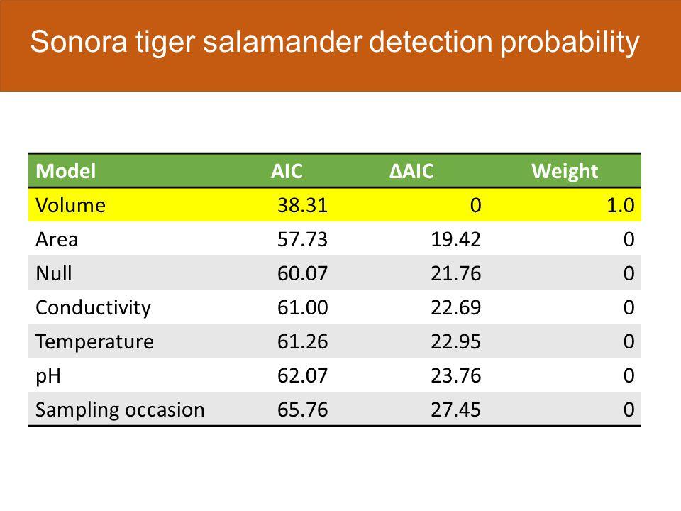 Sonora tiger salamander detection probability