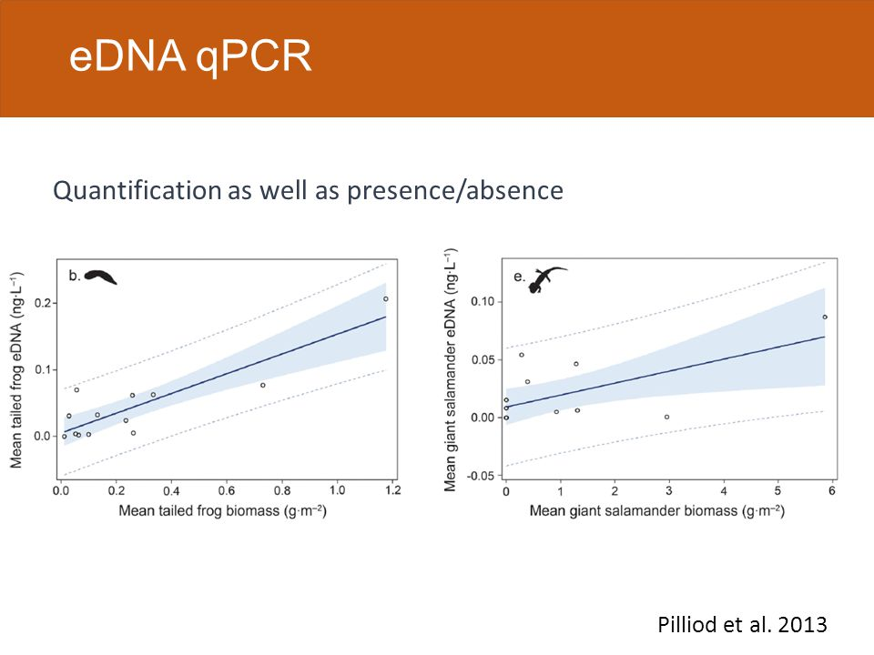 eDNA assay process eDNA test development: eDNA test application: Identify target species set Create and verify qPCR test Collect replicate water samples from DoD sites Run qPCR test Analyze detection data Collect DNA sequence data