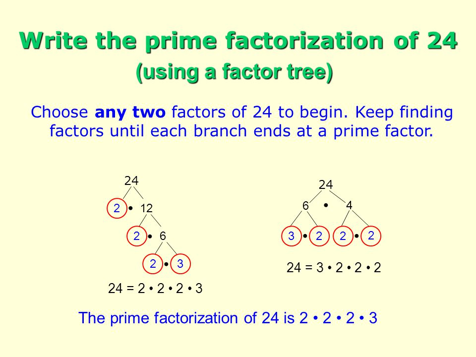 Choose a prime factor of 24 to begin.Keep dividing by prime factors until the quotient is 1.