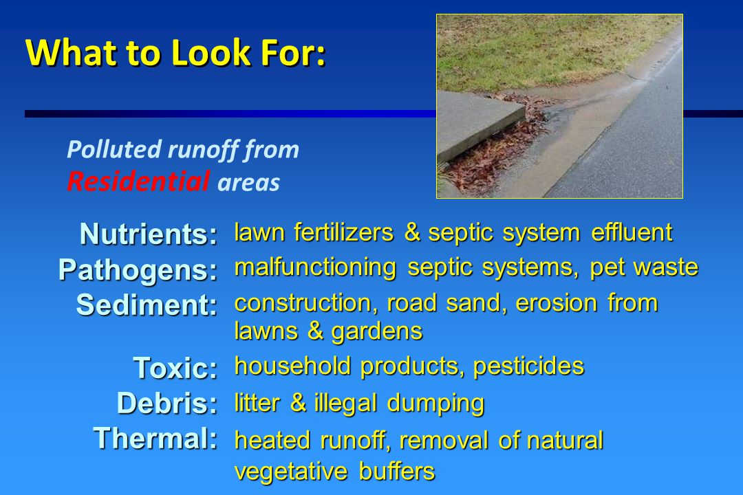 What to Look For: Polluted runoff from Commercial & Industrial areas Nutrients:Pathogens:Sediment:Toxic:Debris:Thermal: malfunctioning or overloaded septic systems & lagoons heated runoff, removal of natural buffers construction, road sand, roadside erosion acid rain and car exhaust auto emissions, industrial pollutants litter & illegal dumping