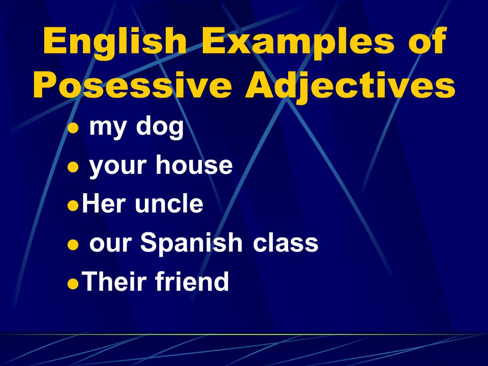 English Examples of Posessive Adjectives my dog your house Her uncle our Spanish class Their friend