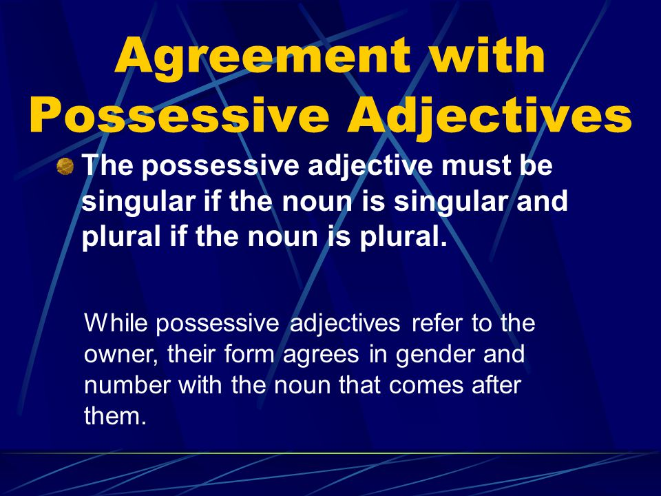 Agreement with Possessive Adjectives The possessive adjective must be singular if the noun is singular and plural if the noun is plural.