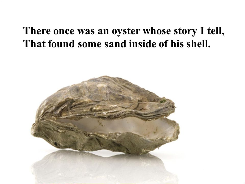 Just a small grain, But it gave him great pain For oysters have feelings Though they seem so plain