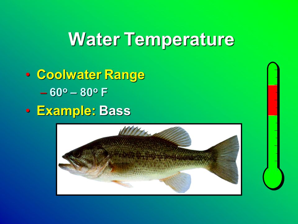 Water Temperature Coldwater RangeColdwater Range –48 o – 65 o F Example: TroutExample: Trout