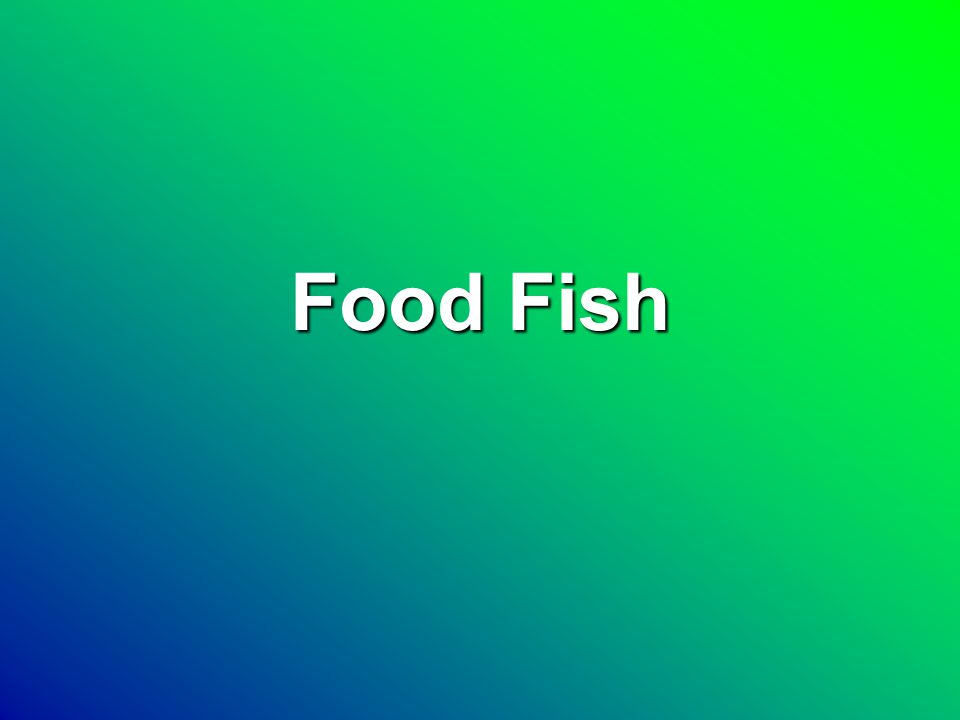 Food Fish Species CatfishCatfish TilapiaTilapia Rainbow troutRainbow trout Atlantic SalmonAtlantic Salmon ShrimpShrimp ShellfishShellfish Striped BassStriped Bass OthersOthers