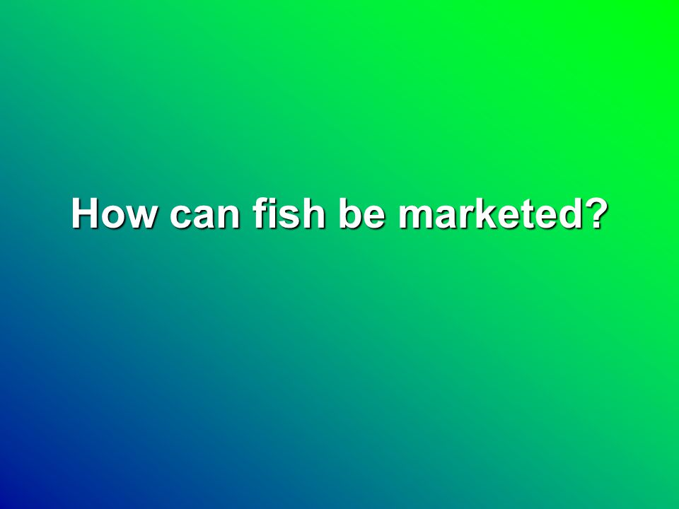 Market Techniques Direct MarketingDirect Marketing WholesaleWholesale –Whole fish –Headed and gutted –Fillets –Steaks Value addedValue added